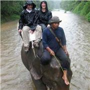 Me On Board An Elephant In The Rain