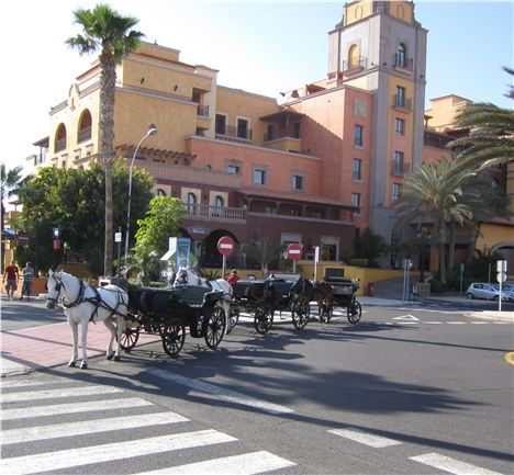 Traditional Carriages In The Main Street