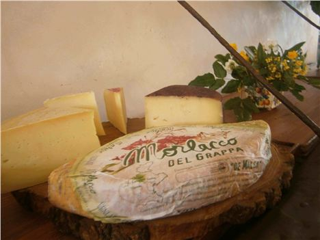 Cheeses For Lunch At Villa Tiepolo Passi