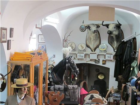 Upmarket Riding Tack Shop