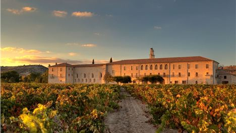 Heavenly Retreat Among Spain's Great Vineyards