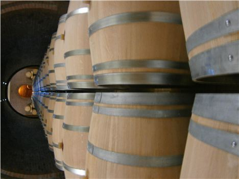 Barrel Of Laughs At Rajac Wine Village