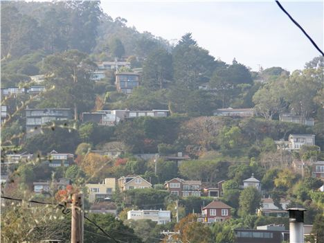 Houses Cling To The Hillsides In Sausalito