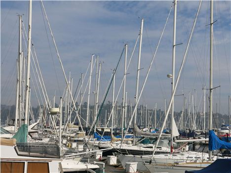 The Marina At Sausalito