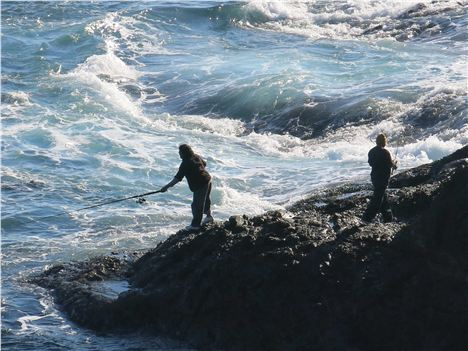 Fishing Off The Headland