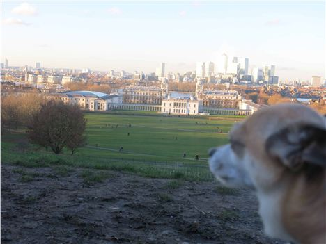 A Sea Of Mud Then Greenwich Palace And Canary Wharf