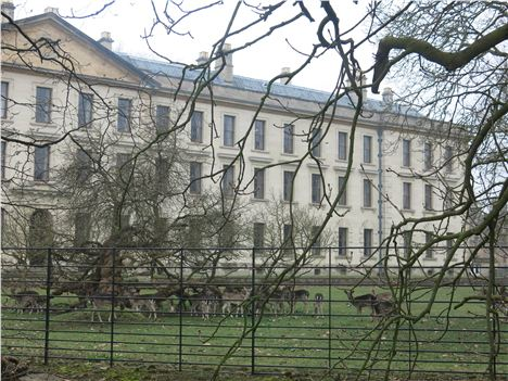 Magdalen's Deer Park And New Building