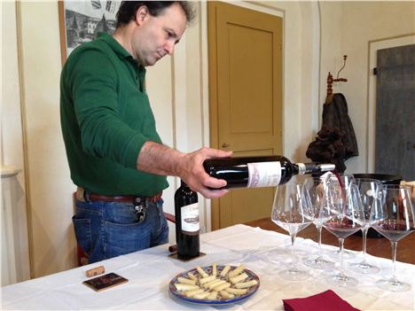 Wine Tasting With Nicolo %28Owner%29Farm And Wine Estate Of Bichi Borghesi, Scorgiano