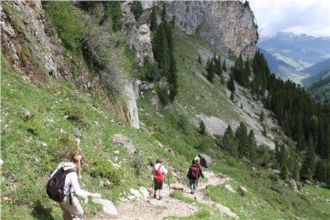 Walk From Sommerberg Alm Down To Valley Station With Roman Erler - Credit Tirol Tourist Board%2854%29