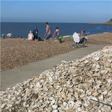 Oyster Shell Pile, Whitstable