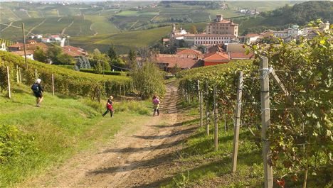 On The Scent Of Truffle Gold In Piemonte