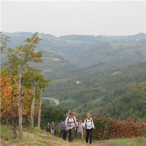 An Uphill Trek For The Hedonistic Hikers