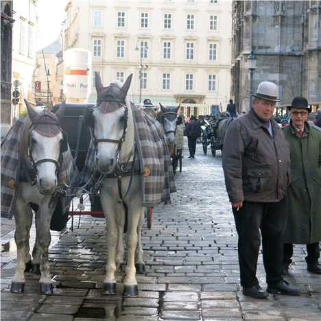 Stephansplatz Carriage Drivers