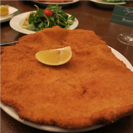 The Mighty Overlapping Schnitzel