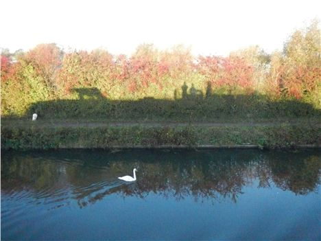 Time To Reflect . . . The Boat's Silhouette On A Hedgerow